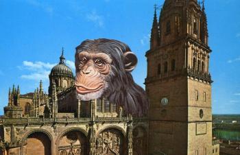 Almeida – Salamanca Tour
