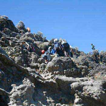 5 Days Mt.kilimanjaro Climbing - Marangu Route