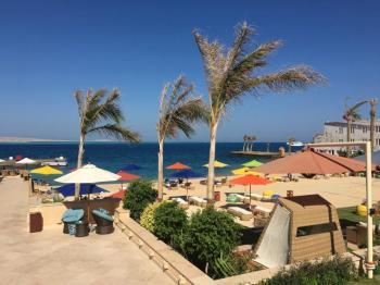 Mahmya Island Tours from El Gouna in Hurghada