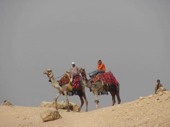 Sharm El Sheikh Tours to Quad Bike and Camel Ride Safari