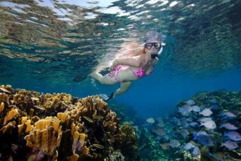 Abu Galum Safari Tours & Blue Hole Snorkeling