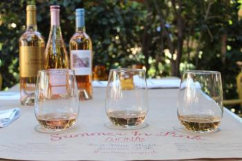 Wine tasting tour in provence of avellino