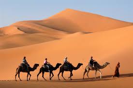 Ouarzazate Tour 3 days Tour Package