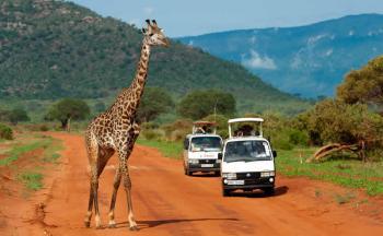 3 Days Tsavo East National Park Tour