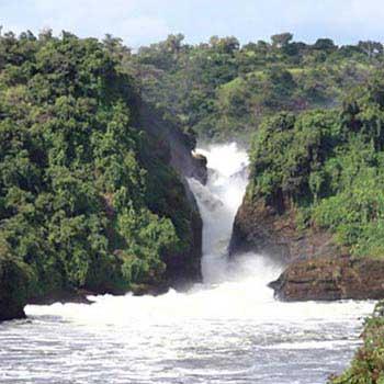 Kampala-Murchison-Kibale-Queen.Elizabeth-Bwindi-L.Mburo-Kampala.Or.Entebbe Tour
