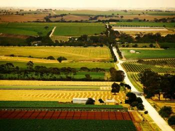 Barossa Valley / Maggie Beer Farm Tour