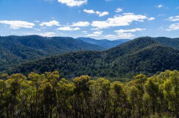 Transfers - Adelaide Hills & Surrounds Tour