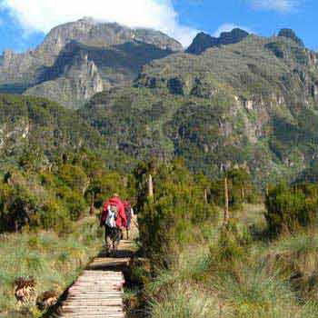 Mount Elgon Track Tour