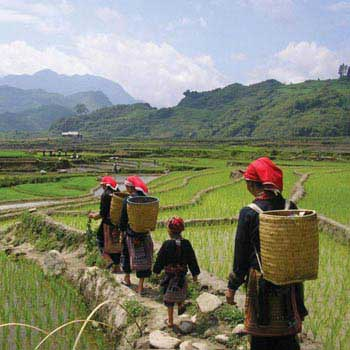 Best of North Vietnam 6 Days Tour