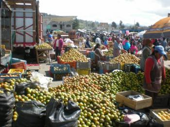 Saquisili Market Tour