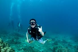 Scuba Diving Phi Phi Island Trip Package