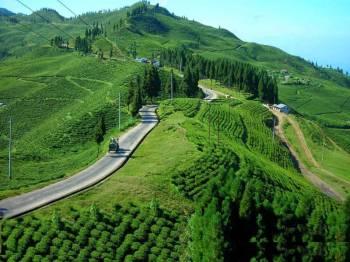 Kathmandu Valley Tea Garden Tour