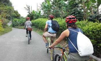 Tour of Salento Road Bike