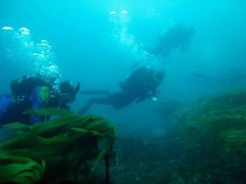 Aquanaut Fishing Day Tour