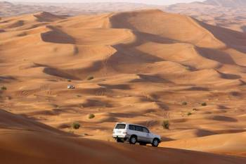 Half Day Desert Safari Tour