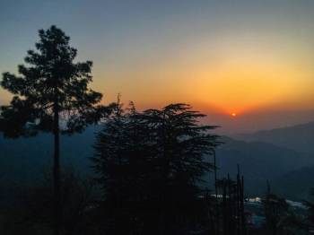 Jungle Livinn Camps and Retreat, Chail Package