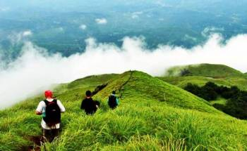 The Best of Wayanad Tour Package