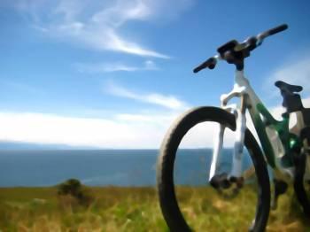 Paragliding & Cycling