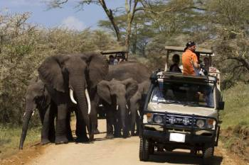 Best Of Kenya and Tanzania Tour
