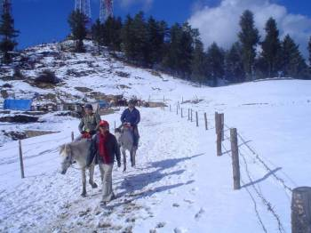 Kullu Manali Shimla Honeymoon Tour Packages from Khammam