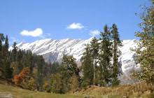 Kullu Manali Shimla Honeymoon Tour Packages from Adoni