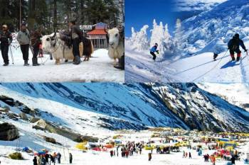 Kullu Manali Shimla Honeymoon Tour Packages from Veraval