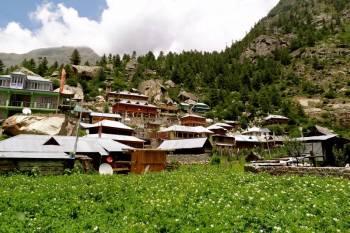 Kullu Manali Shimla Honeymoon Tour Packages from Hassan