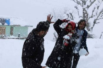 Kullu Manali Shimla Honeymoon Tour Packages from Cuddalore