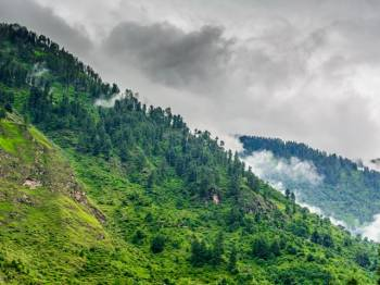 Kullu Manali Shimla Honeymoon Tour Packages from Mirzapur and Vindhyachal
