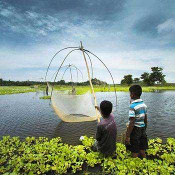 Assam Tour India