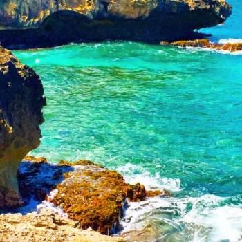 Aloha Hawaii Tour