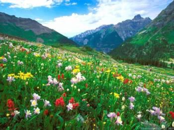 Celestial Kashmir Tour