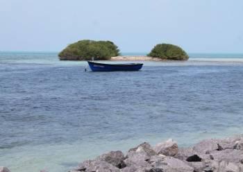Island Adventure Tour