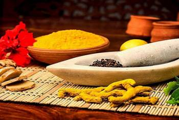 Spices of Kerala & Ayurveda Tour