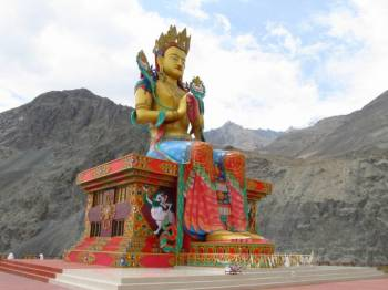 In the Meadows of Leh- Ladakh Tour Package