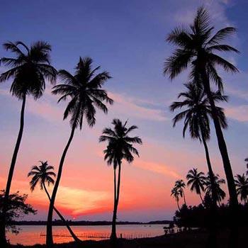 Mini Vacation – Sri Lanka 3 Days 2 Nights TOUR