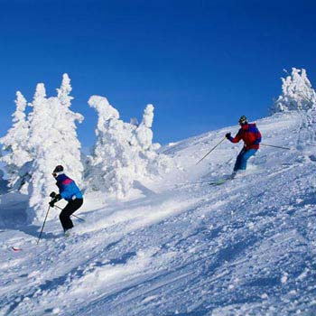 Manali All Beautiful Places Tour