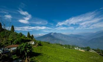 Darjeeling Kalimpong Pemayangtse Pelling Gangtok Tour
