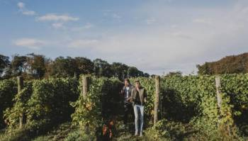 Wine Route Package