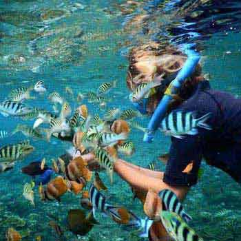 Bali Packages with Lembongan Island