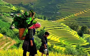 12 Days Discover Treasure On Vietnam Tour