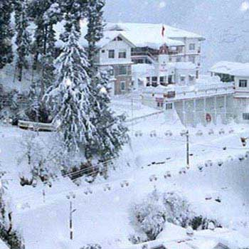 Holiday in Shimla and Chail