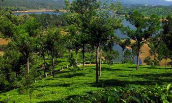 Magnificent Kerala Tour