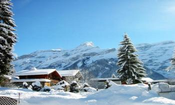 Manali Group Package