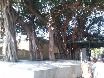 Shri Braj Mandal 84 Kos Yatra Package
