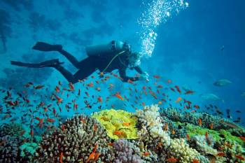 Dwarka - Somnath Tour with Water Sport Activities