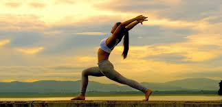 Yog Yatra of North to South India with Goa Tour