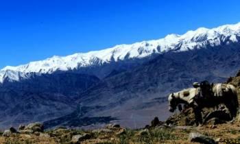 Markha Valley Trek Tour 14 Days