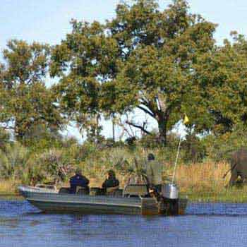 3 Days Selous Camping Safari Tour