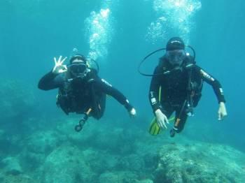Scuba Diving (1 Night) Tour